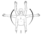 Home Exercises Following Axillary Node dissection